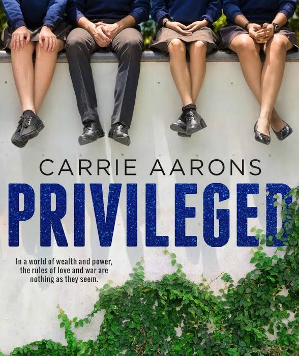 Release Day Blitz – Privileged by Carrie Aarons