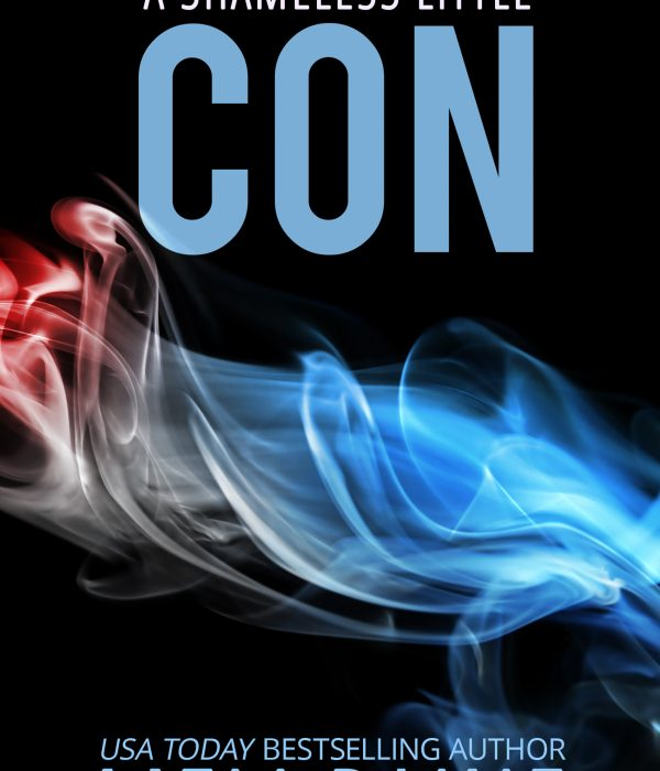 Review: A Shameless Little Con by Meli Raine