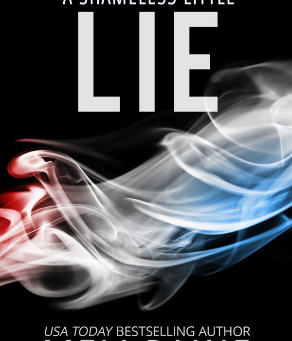 Review: A Shameless Little Lie by Meli Raine