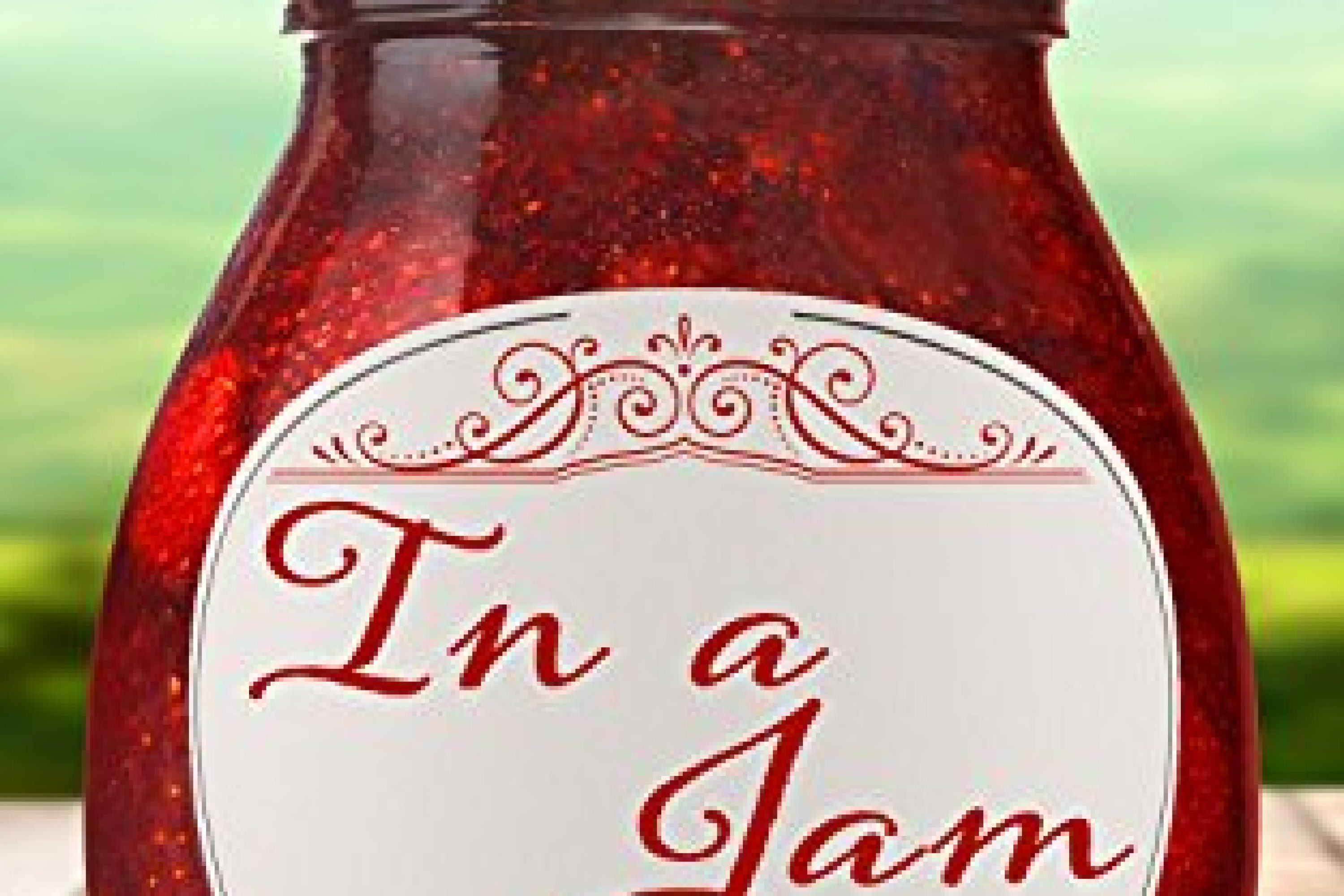 Review: In A Jam by Cindy Dorminy