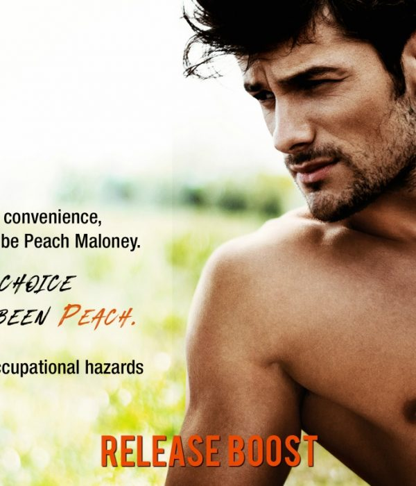 Release Boost: Hot Heir by Pippa Grant