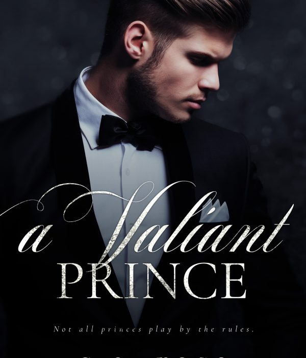 Review: A Valiant Prince by S.E. Rose