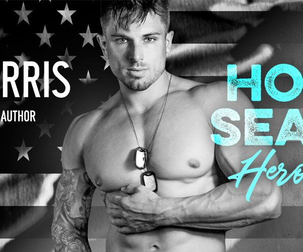 Release Blitz:  HOT SEAL Hero by Lynn Raye Harris