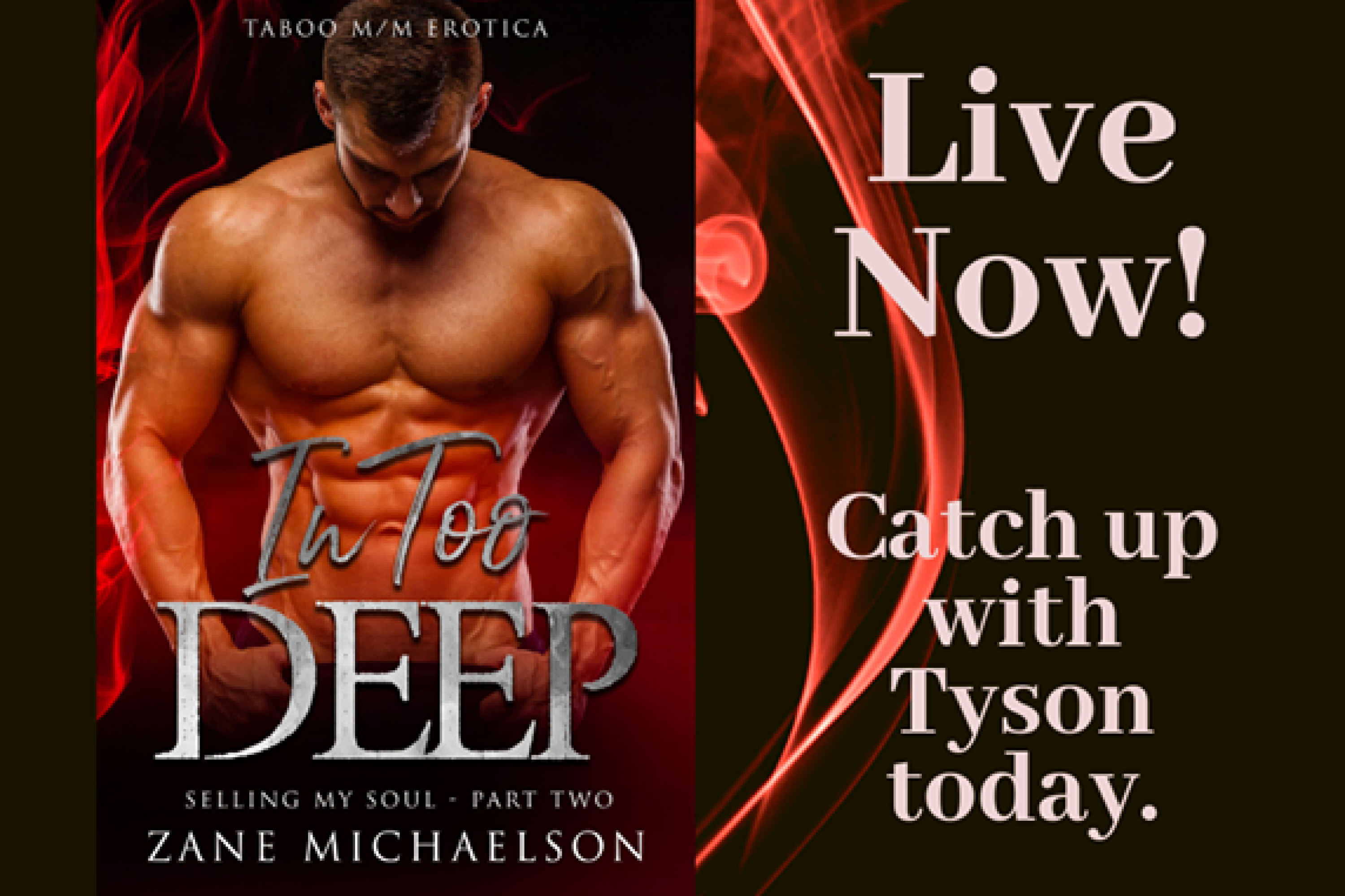 Now Live: In Too Deep: Selling My Soul – Part Two by Zane Michaelson