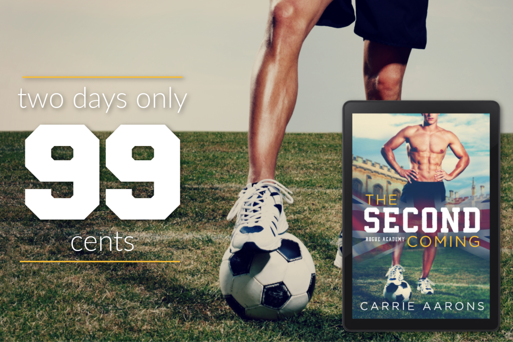 Sale: The Second Coming by Carrie Aarons