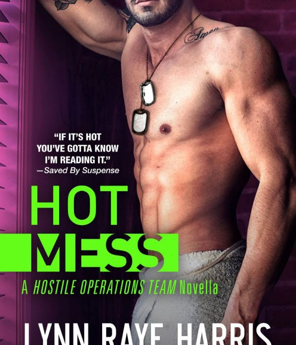 Free: HOT Mess by Lynn Raye Harris