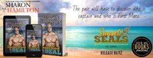 Release Blitz: Treasure Island SEAL by Sharon Hamilton