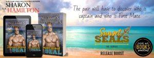 Release Boost: Treasure Island SEAL by Sharon Hamilton